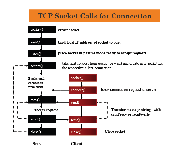 tcp socket calls for connection